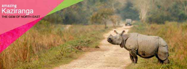 Arunachal Kaziranga Package Tour