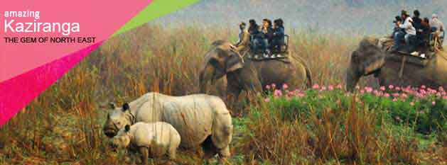 Arunachal Kaziranga Tour Package