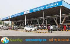 bhutan package tour from bagdogra airport