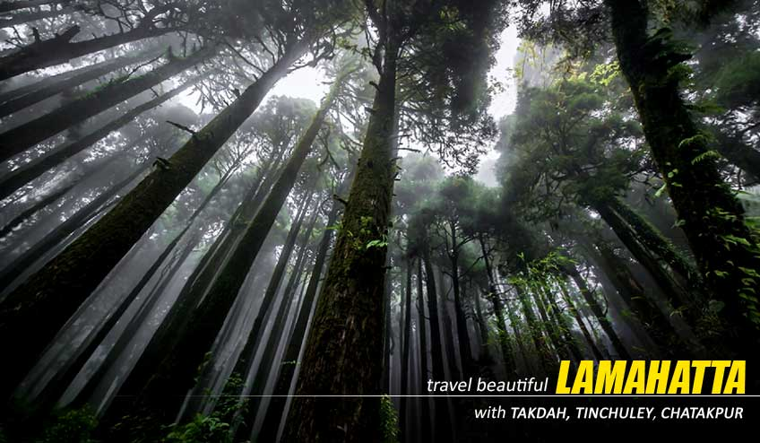 lamahatta tour with homestay