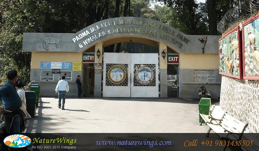 Padmaja Naidu Himalayan Zoological-Park