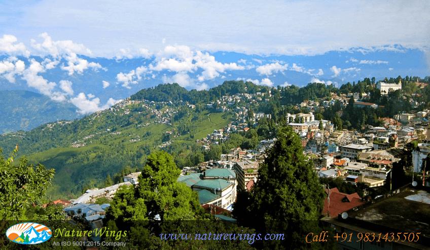 darjeeling City View