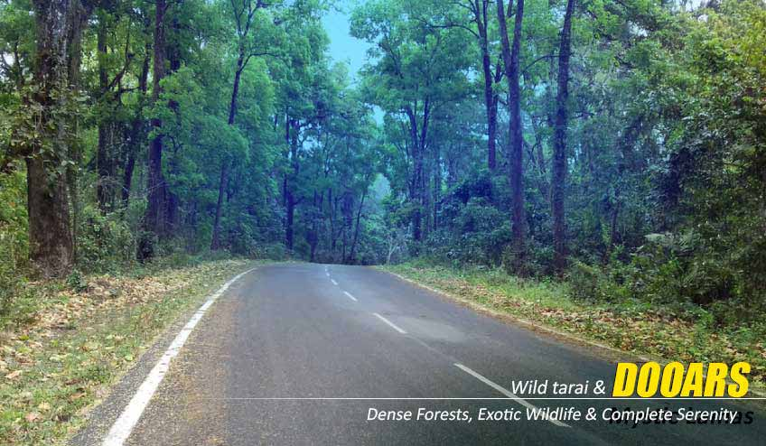 dooars package tour from bagdogra