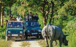 Kaziranga Shillong Tour Exclusions