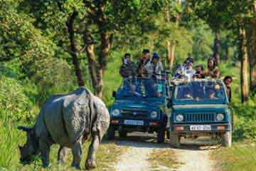 Kaziranga Package Tour