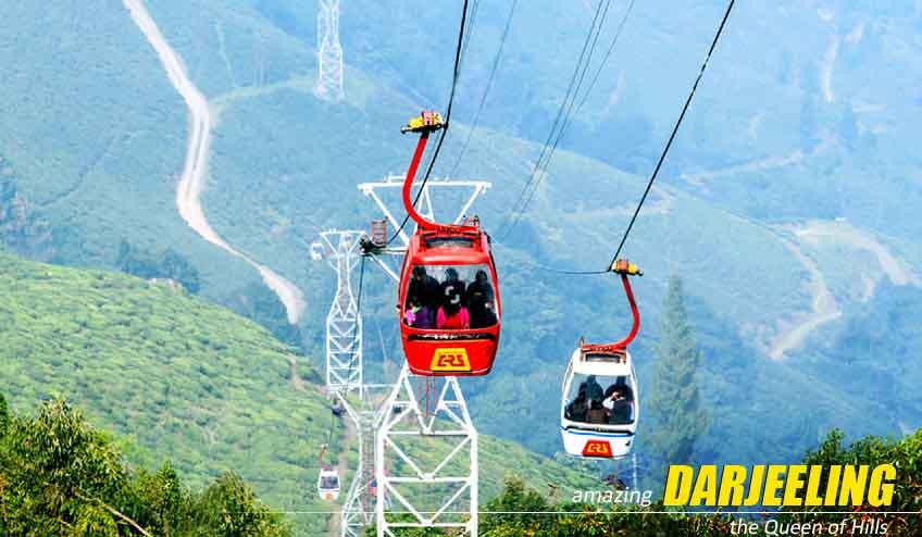 darjeeling lamahatta sightseeing tour