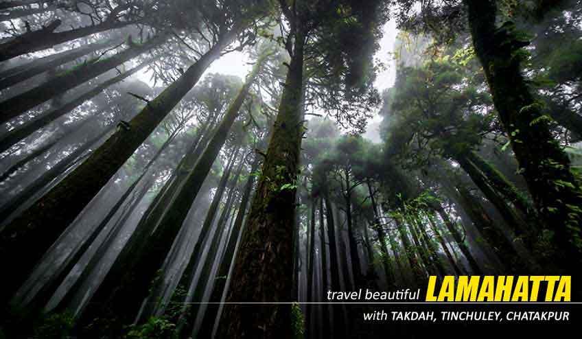 lamahatta darjeeling sightseeing tour