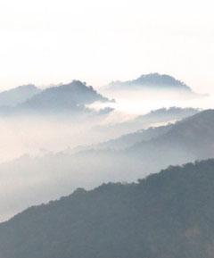 Latpanchar, Darjeeling