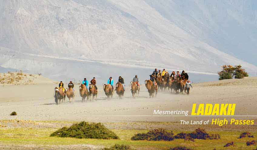 leh ladakh pangong nubra valley tour packages