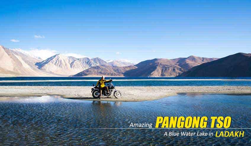 pangong lake package tour