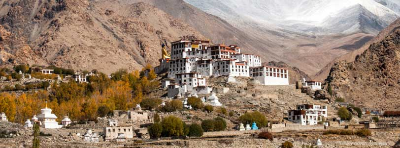 Likir Monastery Ladakh Package Tour