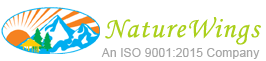 NatureWings Logo