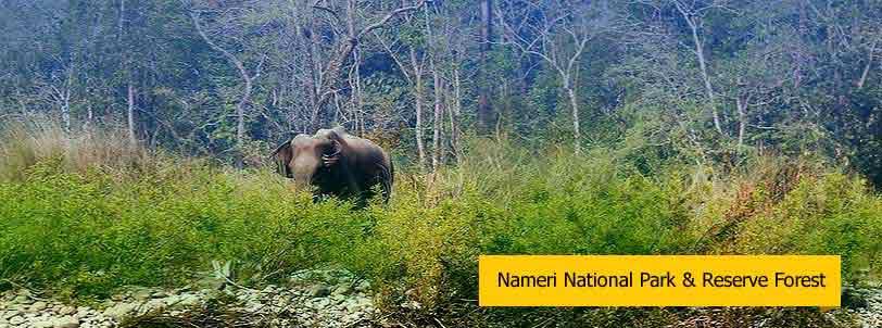 nameri national park tour, assam
