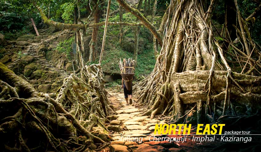 north east package tour from guwahati