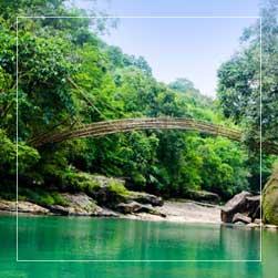 Root Bridge Tour Itinerary