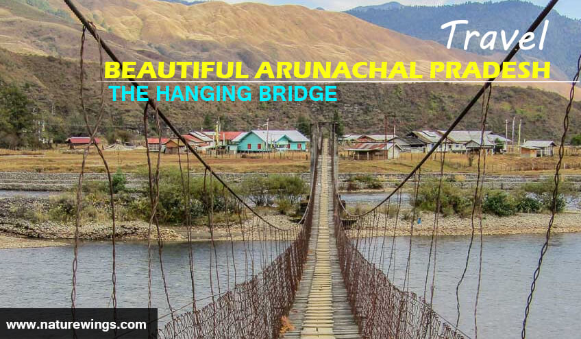 Hanging bridge during Arunachal Pradesh Tour Packages