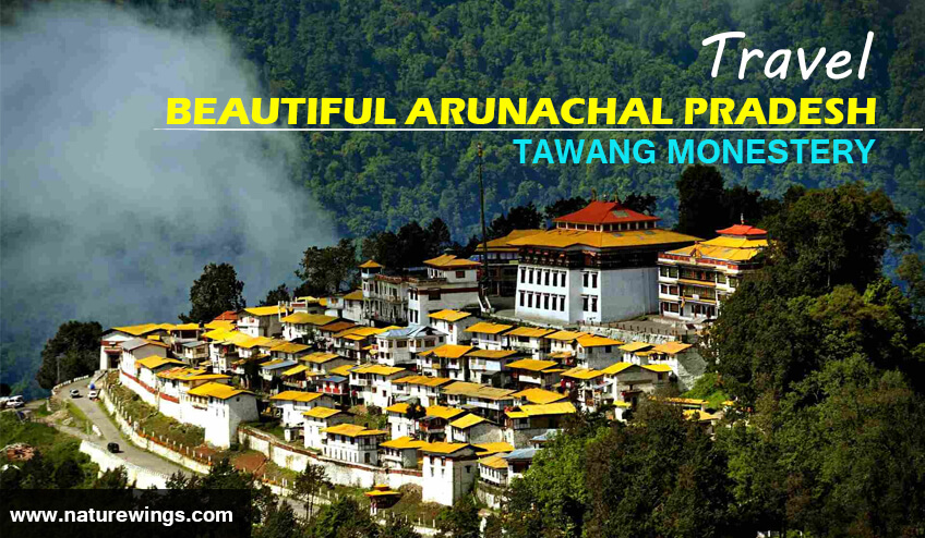 Arunachal Tour Packages