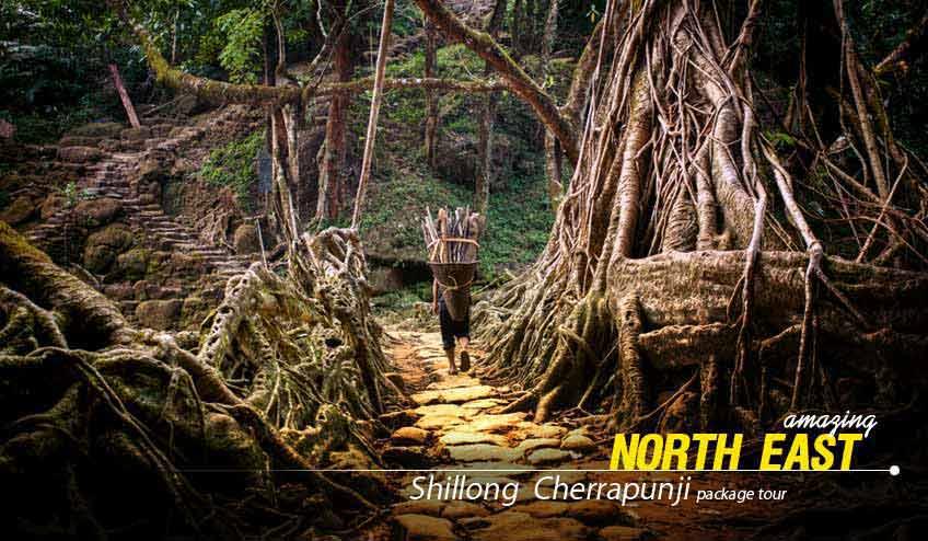 Shillong Cherrapunji Package Tour