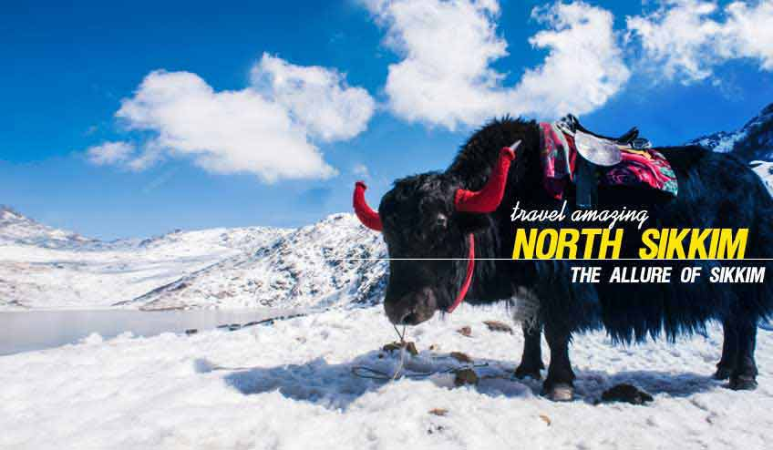 North Sikkim Gangtok Package Tour