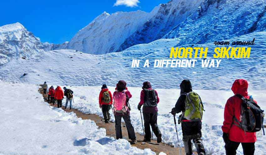 North Sikkim Tour Travel Package Tour in Summer