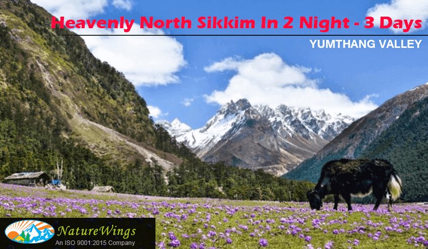 North Sikkim 2 Night 3 Days Package Tour