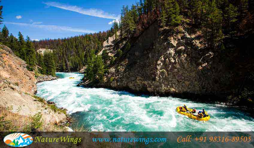 river-rafting-at-lohit-river