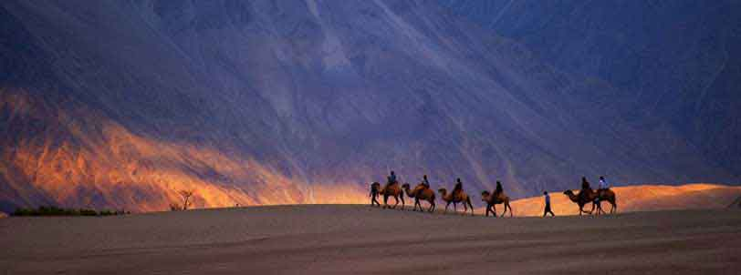 Nubra Valley Ladakh Package Tour