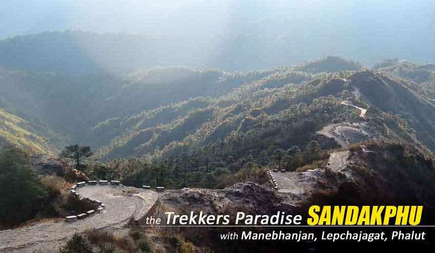 sandakphu phalut trekking