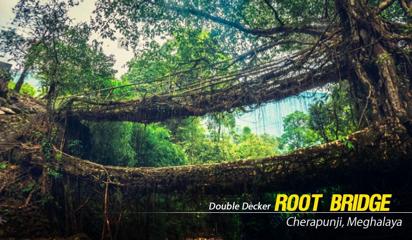 double decker root bridge cherapunji