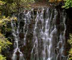 Shillong Meghalaya Tour Package Exclusions