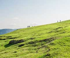 Shillong Meghalaya Package Tour Inclusions