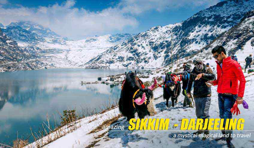 sikkim darjeeling package tour