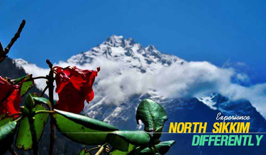 north sikkim tour packages