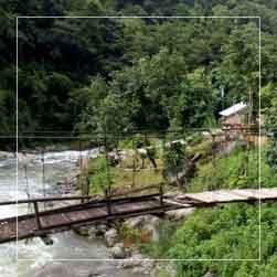Rongpokhola Village Resort, Rongpokhola, Sikkim
