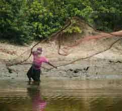 sundarban holiday package tour