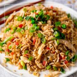 sundarban tour food menu - Fried Rice